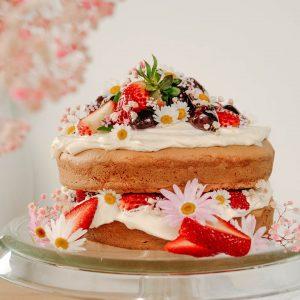 Gluten-Free sponge cake recipe!!